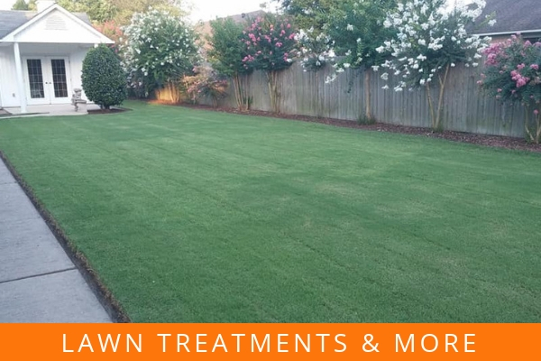 Lawn treatments & more