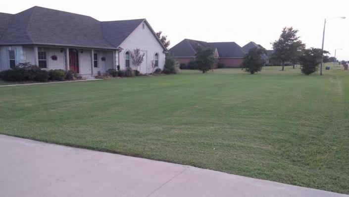 When you choose us for your lawn care needs, you get a stunning lawn that is sure to be the envy of the town!