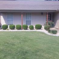 Give your lawn a uniform appearance with our hedge trimming services.