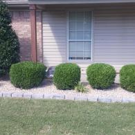 We offer expert landscaping services that go above and beyond!